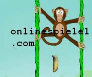 Jungle spider monkey spiele online